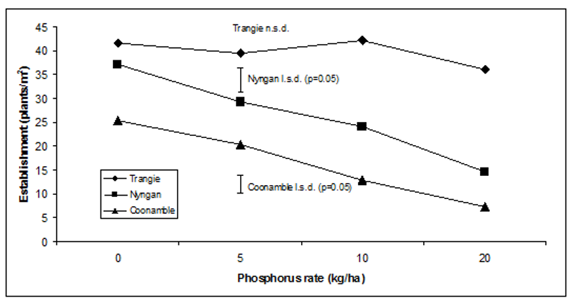 Figure 1: Effect of phosphorus rate on establishment in canola, Trangie, Nyngan and  Coonamble, 2015   Source: NSW DPI, 2015
