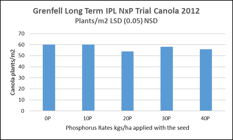 Figure 2: Effect of phosphorus rate on establishment in canola, Grenfell 2012 Source: Incitec Pivot Fertilisers