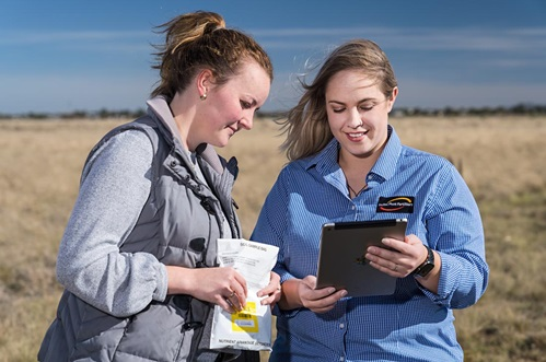 Agronomy cadet, Fiona McDonald, and Rebecca Hall, marketing manager – Nutrient Advantage, enter soil sample details into Nutrient Advantage Pro, the latest online system for accredited agronomists from Incitec Pivot Fertilisers.